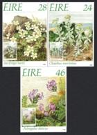 Ireland Endangered Flora Of Ireland 3v Maxicards SG#698-700 - 1949-... Republik Irland