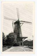 D328 - Oss Witte Molen - Molen - Moulin - Mill - Mühle - Oss