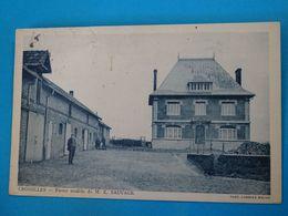 61 ) Croisilles - Ferme Modèle De M.E SAUVAGE  -  Année 1937 - EDIT - Combier - Autres Communes