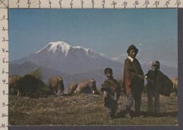 115349GF/ ECUADOR, Volcán Chimborazo - Ecuador