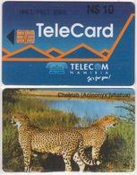 302/ Namibia; P3. Cheetah - Namibie