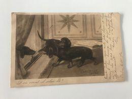 """Carte Postale Ancienne (1903) """"D'où Vient-il Celui-là?"""" - Hunde"""