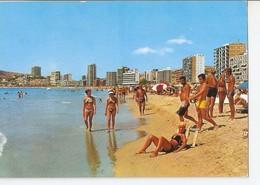 Postal 042894 : Benidorm (España). Vista Playa Poniente - Cartoline