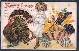 C193 THANKSGIVING FILLETTE DINDON TURKEY GIRL Gaufrée Embossed - Thanksgiving