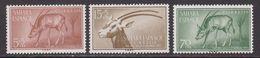 SAHARA 1955 - Serie Nueva Sin Fijasellos Edifil Nº 123/125 - MNH - - Spanische Sahara