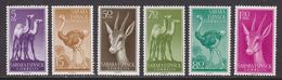 SAHARA 1957 - Fauna Serie Nueva Sin Fijasellos Edifil Nº 133/138 - MNH - - Spanische Sahara