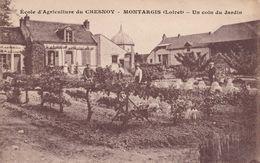 Montargis : Ecole D'Agriculture Du Chesnoy - Un Coin Du Jardin - Montargis
