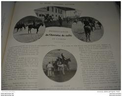 1903 CHEVAUX DE SELLE DE L'ETRIER - VENERIE DE VIRELADE CARAYON LA TOUR - CONCOURS DE TERRIERS - CHAMPIONNAT FLEUR - Newspapers
