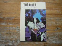 L'ORCHIDOPHILE Onzieme Année BULLETIN N° 40 FEVRIER 1980 - Garden