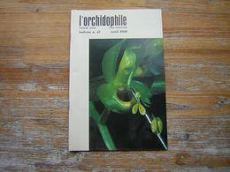 L'ORCHIDOPHILE Onzieme Année BULLETIN N° 41 AVRIL 1980 - Garden
