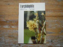 L'ORCHIDOPHILE Onzieme Année BULLETIN N° 42 JUIN 1980 - Garden