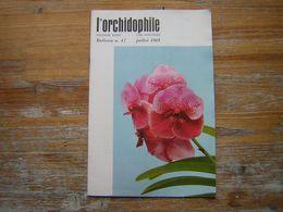 L'ORCHIDOPHILE Douzieme Année BULLETIN N° 47 JUILLET 1981 - Garden
