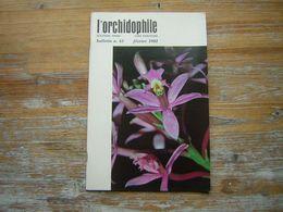 L'ORCHIDOPHILE Douzieme Année BULLETIN N° 44 FEVRIER 1981 - Garden