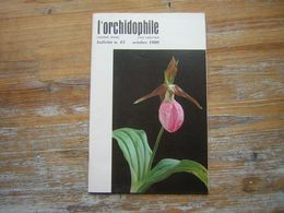 L'ORCHIDOPHILE Onzieme Année BULLETIN N° 43 OCTOBRE 1980 - Garden