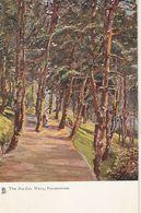 """""""The Sig-Zag Walk. Folkestone"""" Tuck Oilette Postcard # 1471 - Tuck, Raphael"""