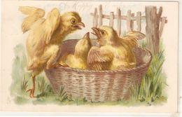 """Chicks In Basket"" Tuck Easter Series PC # 2808 - Tuck, Raphael"