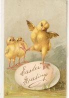 """""""Chicks.Dance On Ig Egg"""" Tuck Easter Series PC # 2840 - Tuck, Raphael"""