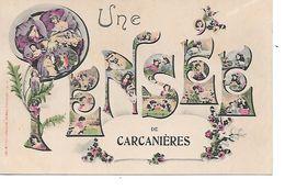 Une Pensée De CARCANIERES. - France