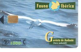 ESPAGNE - Fauna Ibérica - Téléfonica 1000 - Oiseau - Espagne