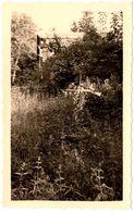 Photo Originale Croix De Fusils Dans Le Parc Du Château De Barante à Dorat (63300) à La Pentecôte 1957 - Lugares
