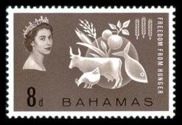 Bahamas, 1963, Freedom From Hunger, FAO, United Nations, MNH, Michel 185 - Bahamas (...-1973)