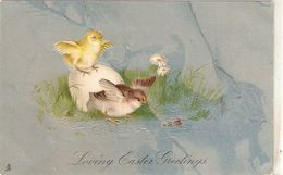 """""""Chicks Frightened By Ant"""" Tuck Easter Series PC # 2812 - Tuck, Raphael"""