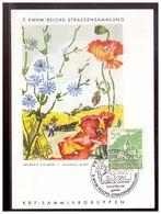 Dt- Reich (009781) Propagandakarte 7. KWHW- Reichs- Strassensammlung, Wegwarte , Blanco Gest. Mit SST Frankfurt Am 30.3. - Germania