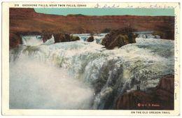 ETATS UNIS D'AMERIQUE USA - SHOSHONE FALLS NEAR TWIN FALLS IDAHO - ON THE OLD OREGON TRAIL - Circulé BLOOMINGTON INDIANA - Idaho Falls