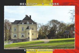 Carte Postale, REPRODUCTION, Asse (14), Flemish Brabant, Belgium - Bâtiments & Architecture