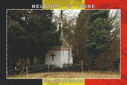 Carte Postale, REPRODUCTION, Asse (20), Flemish Brabant, Belgium - Bâtiments & Architecture