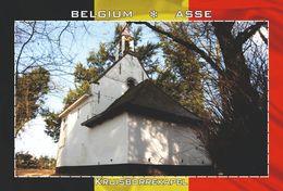 Carte Postale, REPRODUCTION, Asse (22), Flemish Brabant, Belgium - Bâtiments & Architecture