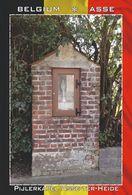 Carte Postale, REPRODUCTION, Asse (27), Flemish Brabant, Belgium - Bâtiments & Architecture