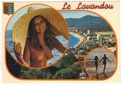 Lot 2 Cartes CPM 83 LE LAVANDOU Multivues Pin Up Seins Nus Et Vue Aérienne Années 1970 - Le Lavandou