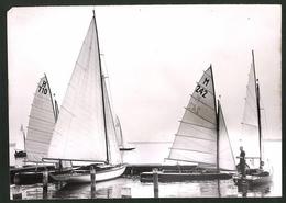 Fotografie Ansicht Berlin-Müggelsee, Start Der Segelboote - Sports