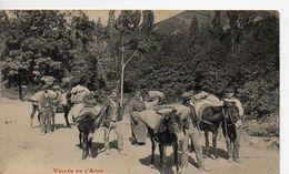 217 - AXAT Caravane De Montagnards - Axat