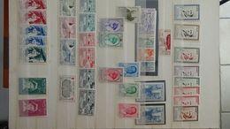 D111 Belle Collection D'Algéie, Maroc Et Tunisie . Très Sympa !!! - Stamps