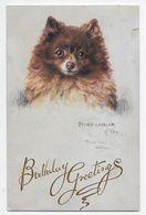 MAUD WEST WATSON - Pomeranian - Tuck Oilette 9977 - Andere Zeichner