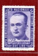 PRO VITTIME POLITICHE  L. 2  COL.G.MONTEZEMOLO - 1946-60: Marcofilia