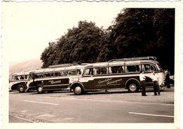 Photo Originale Bel Alignement D'Autocar & Car Güntersloher Reiseexpress En 1957 - Auto's