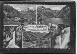 AK 0513  Schladminger Tauern - Riesachsee ( Gfölleralm ) / Verlag Gründler Um 1960 - Schladming