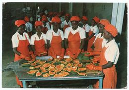 SOMALIA - AFGOI (AFGOOYEH) PREPARATION OF FRUIT JUICES IN THE ITOP FACTORY - Somalia