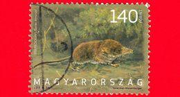 UNGHERIA - Usato - 2013 - Fauna - Animali D'Ungheria - Toporagno (Sorex Minutus) - 140 Ft - Ungarn