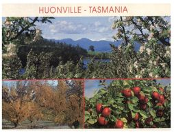 (A 4) Australia - TAS - Huonville - Australia