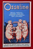 CPA Publicité Cochons/ Ossatine-Sulfate D'ammoniaque/  Gembloux - Werbepostkarten