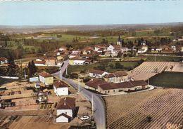 Loire - Lentigny - Vue Générale Aérienne - Francia