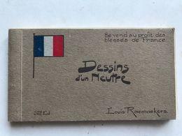 Carnet De 21 Cpa-illustrateur Louis Raemaekers-militaria-dessins D'un Neutre-se Vend Au Profit Des Blesses De France - Otros