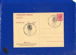 ##(DAN206)-1974-Cartolina Postale L.40 Stampa Privata-repiquage Fiorenzuola D'Arda 2^ Mostra Filatelica Con Annullo Spec - 1971-80: Marcophilie