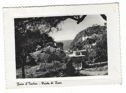 6791 - FORIO D' ISCHIA PUNTA DI ZARO NAPOLI 1952 - Other Cities