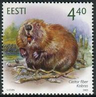 Estonia 2005  Correo Yvert Nº  482 ** Fauna Salvaje. Castor - Estonia