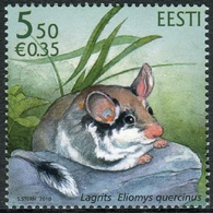 Estonia 2010  Correo Yvert Nº  625 ** Fauna. Roedor - Estonie